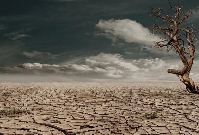 Trockenheit in der Wüste